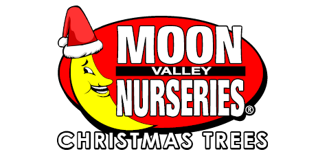 Moon Valley Nurseries Christmas Trees Logo
